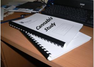 Image for marijuana studies