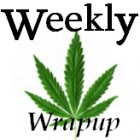 Image for wrapup of medical marijuana news
