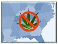 Image of medical cannabis legalization in the South