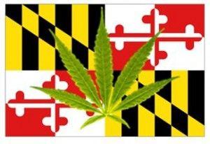 , Maryland's medical cannabis waiting game frustrates entrepreneurs