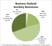 , Bright Marijuana Business Outlook: 80% of Ancillary Cannabis Firms Expect 'Big' or Moderate Growth