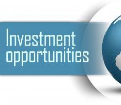 marijauna investments