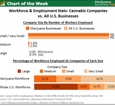chart on marijuana employment