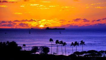 hawaii dispensaries