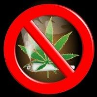 cannabis restrictions