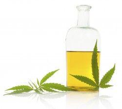 marijuana oils