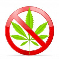 marijuana ban