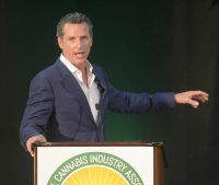 , Newsom: California marijuana measure has anti-monopoly safeguards