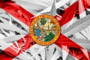 Florida medical marijuana state-mandated food-safety inspection deadline, Florida business resumes medical cannabis processing after inspections