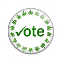 Marijuana vote/election