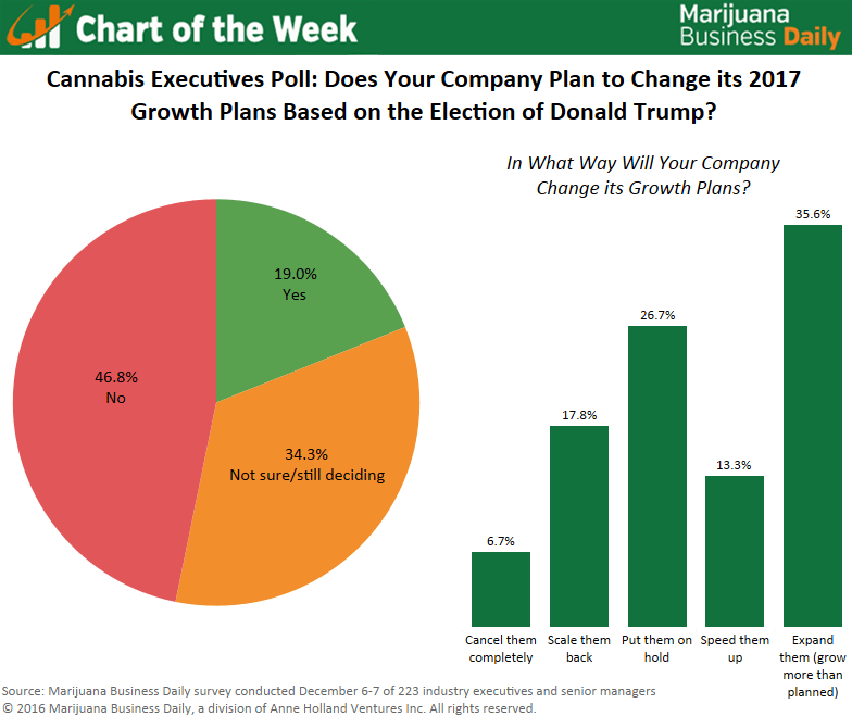 , Chart: The Trump effect – Some marijuana companies shifting 2017 growth plans, but most staying the course