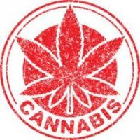 , Trade groups tied to cannabis industry sprouting up rapidly