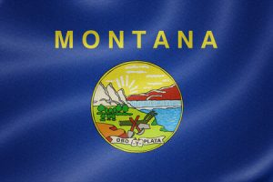 42218210 - montana flag on the fabric texture background