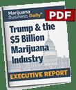 Trump Report 2017