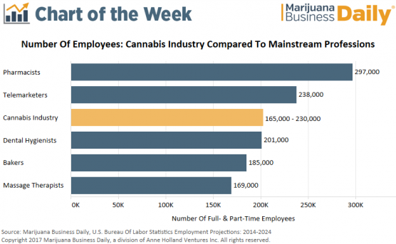 Chart Cannabis Industry Employs 165 000 Plus Workers