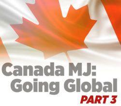 , Canadian exports of medical marijuana soar as producers seek overseas toehold