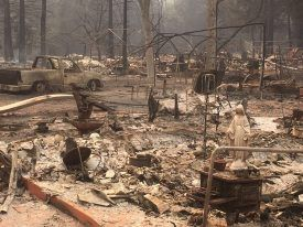 , California wildfires a bump in the road for state's marijuana industry, insiders say