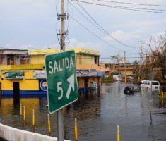 , 'We lost it all': Puerto Rico medical marijuana businesses assess hurricane damage