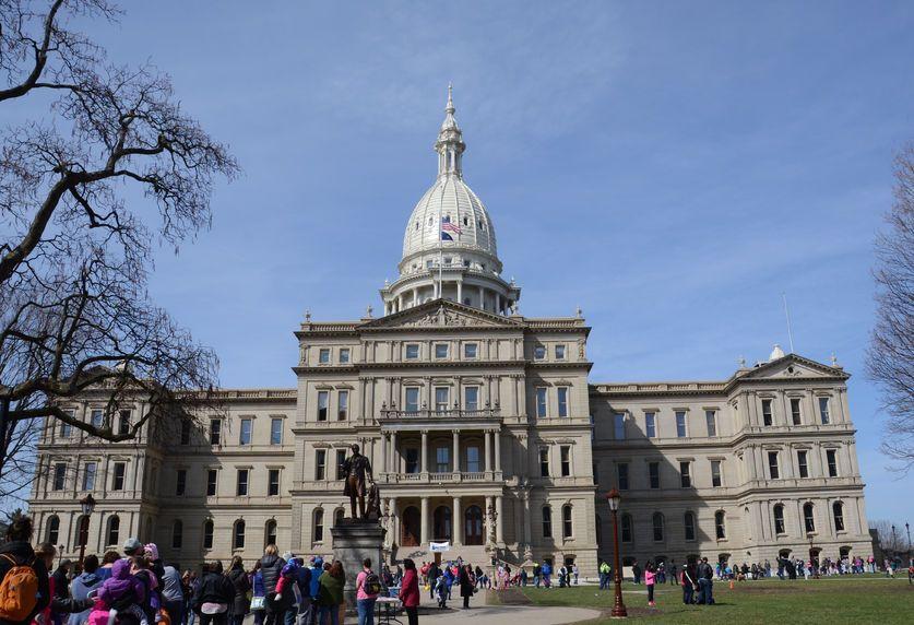 Michigan medical marijuana licensing board, Industry likes Michigan gov's move to abolish medical marijuana licensing board
