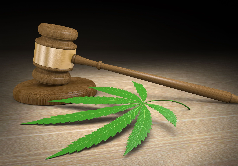 Image of judge's gavel, marijuana leaf