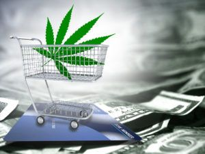 , Canopy aims to have recreational marijuana outlets open in Canada by summer