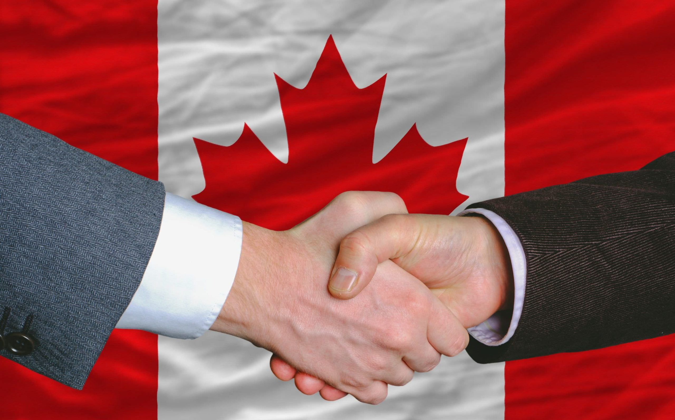 , Aurora Cannabis to acquire Canadian rival MedReleaf for CA$3.2B in industry's biggest deal