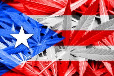 , Puerto Rico medical marijuana market 'growing exponentially'