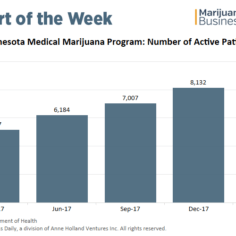 Minnesota medical marijuana patient count