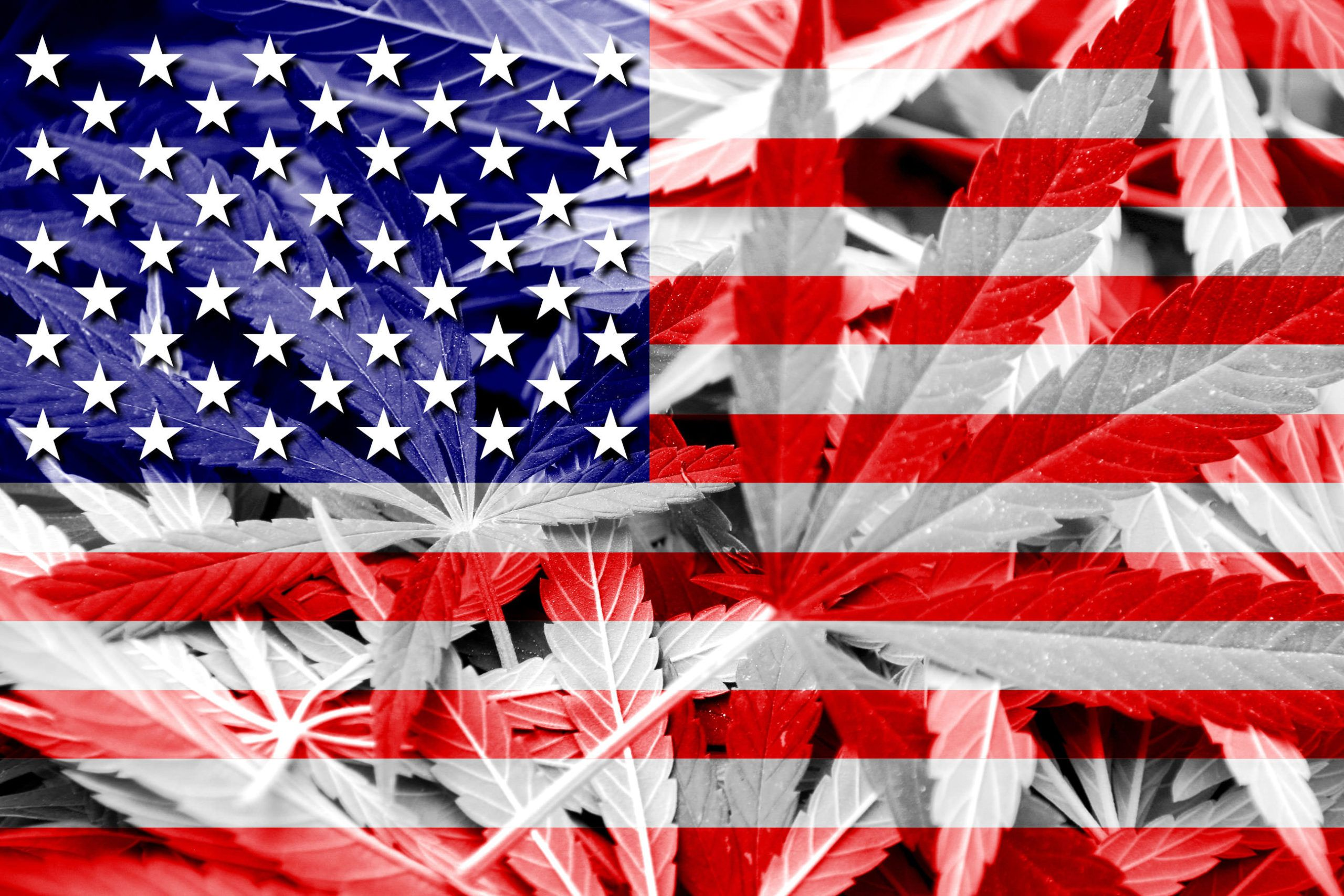 , Trump's reported pledge spurs question: The beginning of the end of US marijuana prohibition?