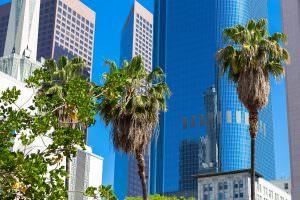 California cannabis trade group threatens to sue L A  over