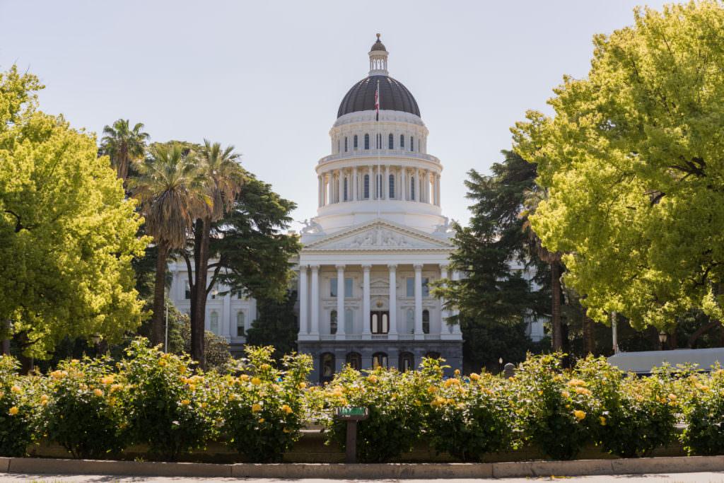 More Q&A with California marijuana czar Nicole Elliott: 'High-level' criminality focus in fight against illicit MJ market