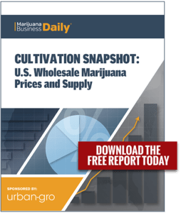 Download Your Report Today