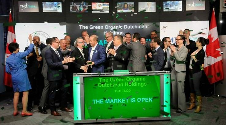 Green Organic Dutchman slashes cannabis production target 85% for 2020
