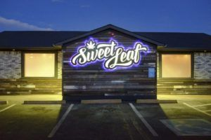 Sweet Leaf stripped of 26 of its Denver marijuana licenses for alleged illegal sales looping scheme, Key business lessons from Sweet Leaf's loss of 26 marijuana licenses in Denver