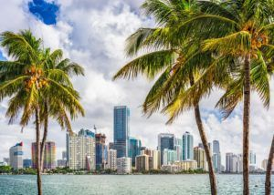 Florida medical marijuana, Florida's medical cannabis industry has only one truly dominant player