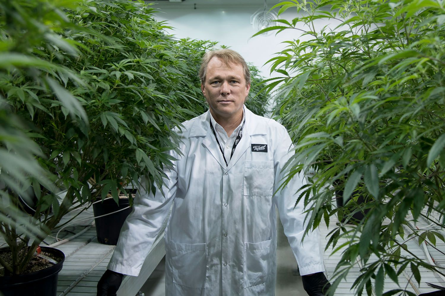Constellation Brands Canopy Growth, Constellation invests CA$5 billion in cannabis giant Canopy in deal financed by BofA Merrill Lynch