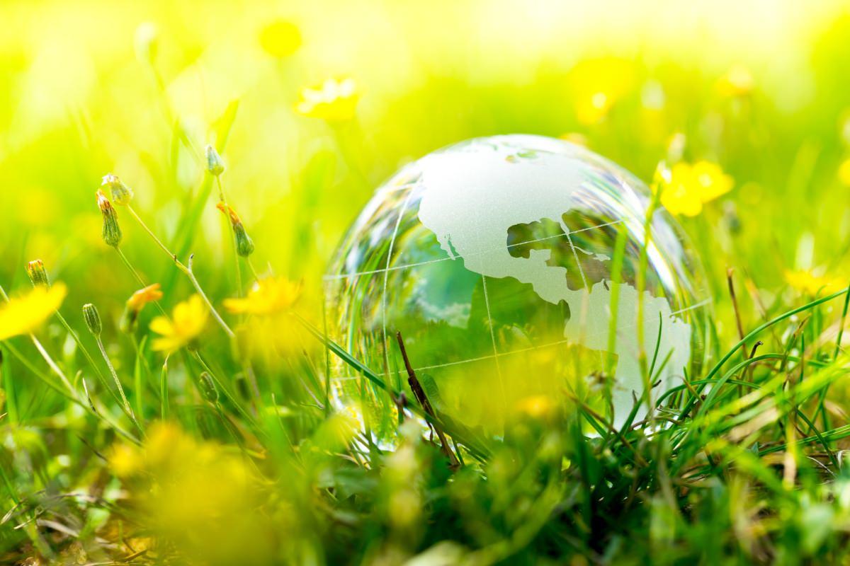 marijuana cultivation environmental impact, Marijuana growers stare down costly, burgeoning environmental regulations
