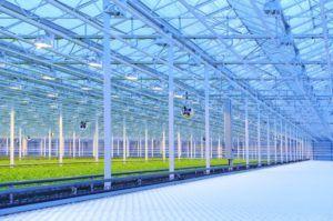 Aurora Sky cost, Aurora Sky cannabis facility's price tag soars to CA$150 million