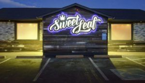 Sweet Leaf marijuana case, Owners of Colorado marijuana retailer Sweet Leaf sentenced to prison in landmark case