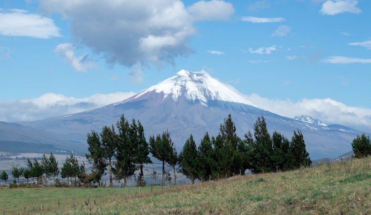 Ecuador legal medical marijuana hemp, Ecuador moves closer to legalize medical cannabis and hemp