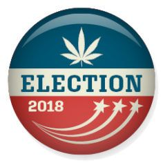 , US House flips to Democrats in a positive sign for marijuana reform
