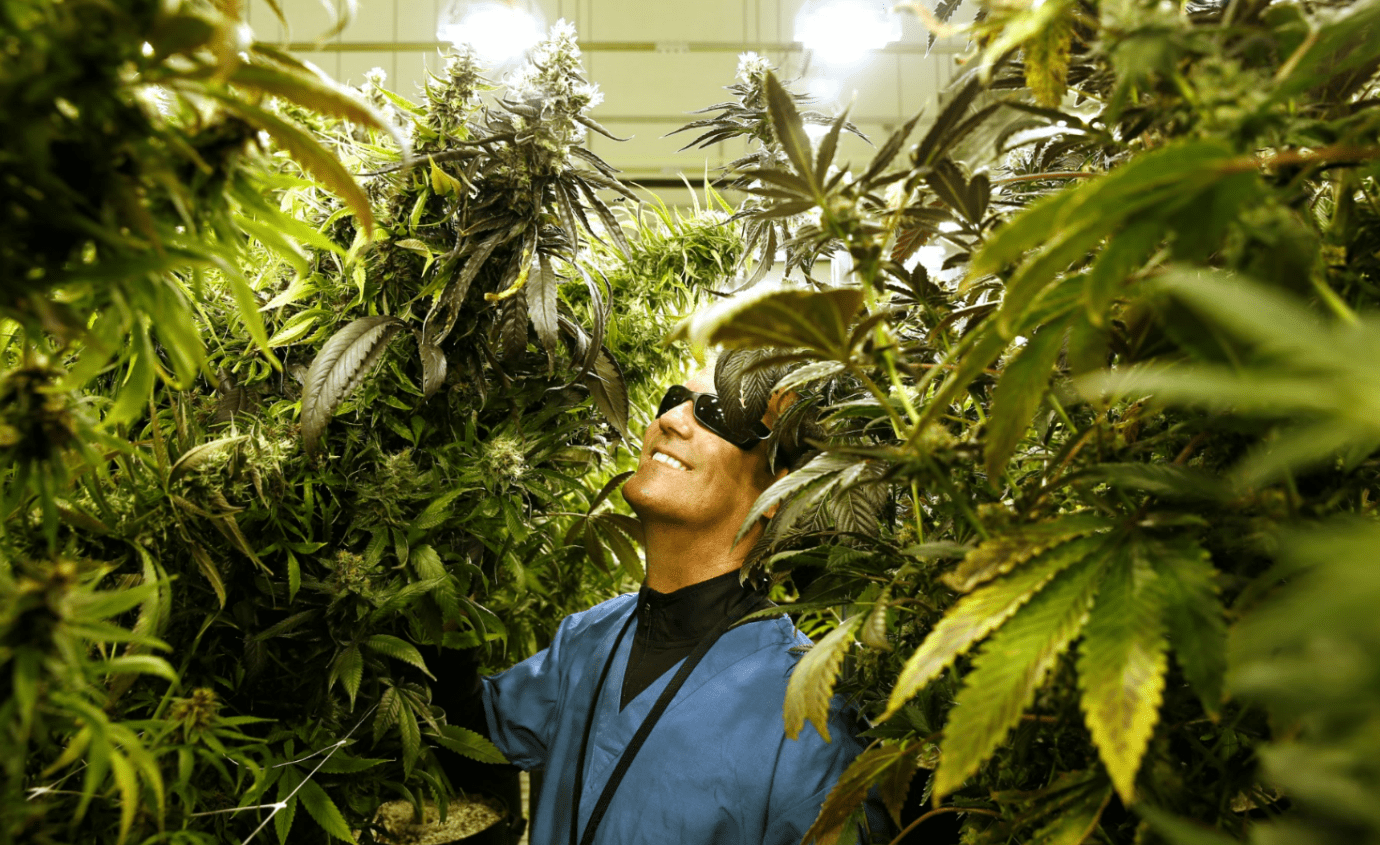 photos marijuana business magazine, Behind the Cover: Photos from Marijuana Business Magazine's October 2018 Issue