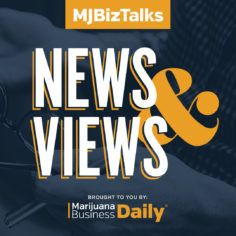 Use for the featured image - centered logo - MJBizTalks News & Views