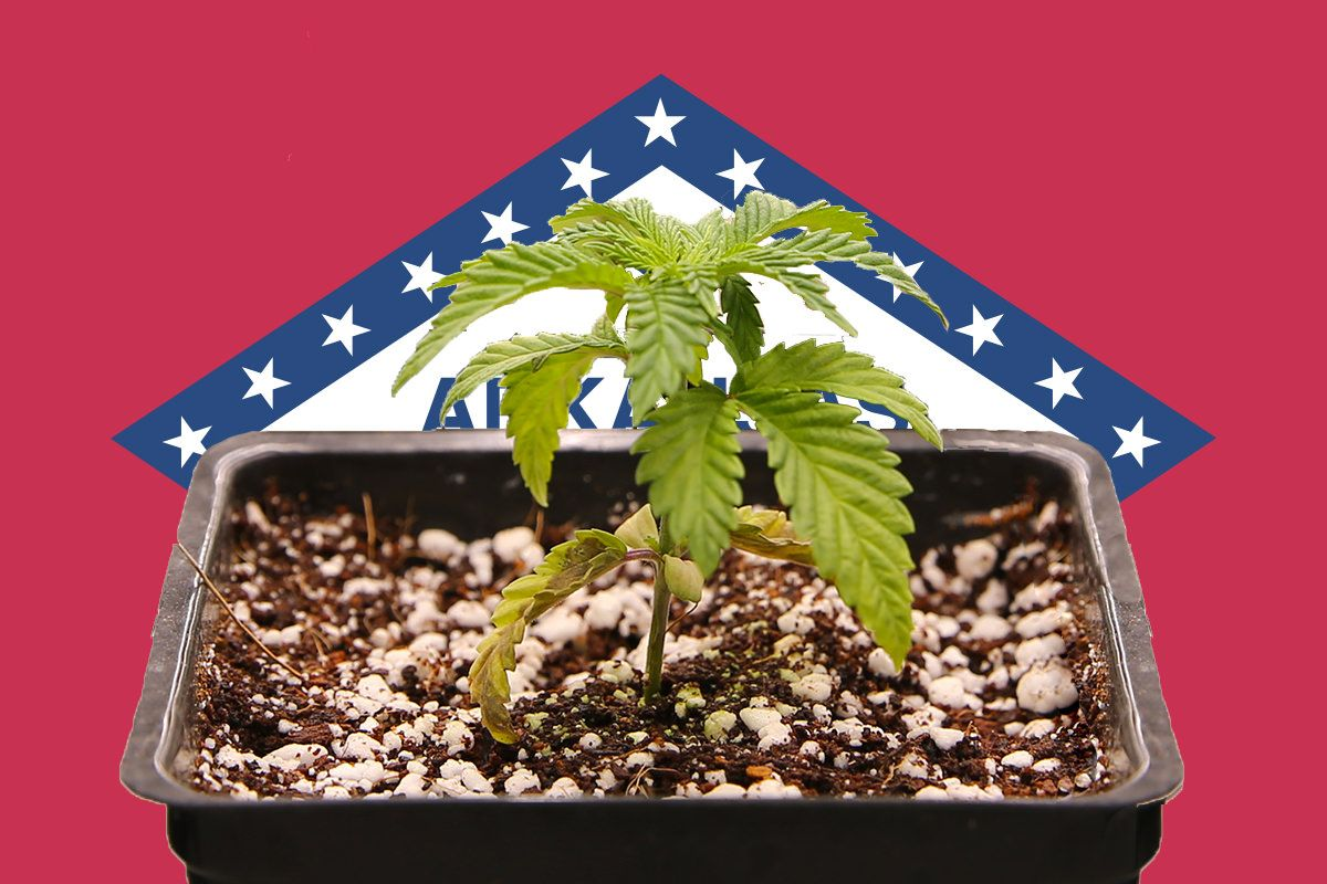 cannabis news business, Cannabis business takeaways for week ending Jan. 18 (SLIDESHOW)