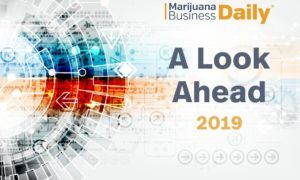 Marijuana business opportunities, Opportunities & challenges cannabis entrepreneurs face in 2019
