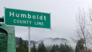 California cannabis, California governor to send National Guard to combat illegal marijuana grows