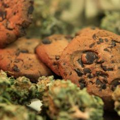 Marijuana Edibles & Infused Products   Cannabis Extraction News