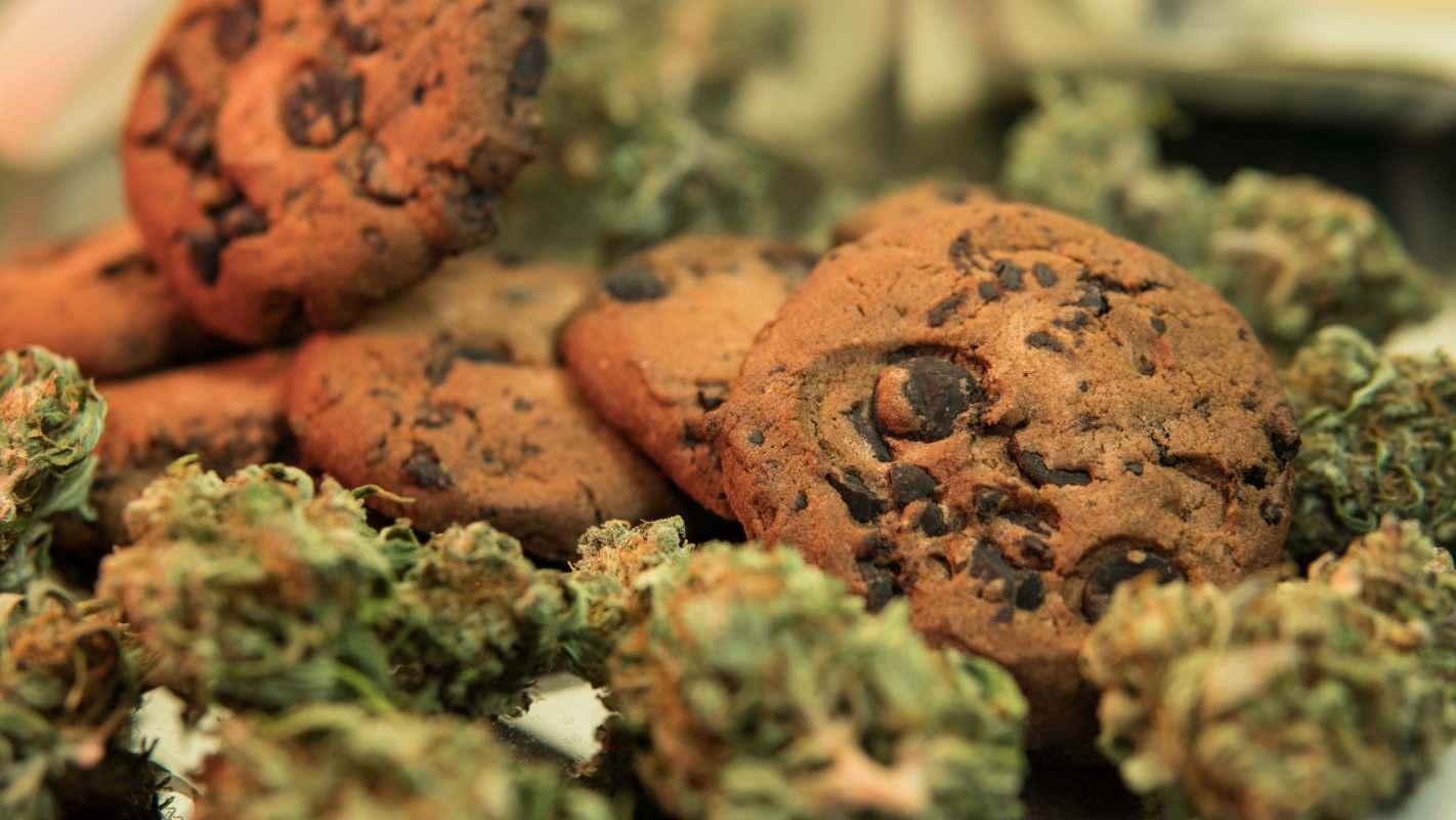 Canadian cannabis market growth, Canadian marijuana market to hit CA$11 billion, pivot from combustibles, study shows