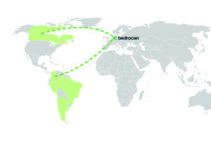 Bedrocan Canopy Growth dispute, European cannabis leader Bedrocan to re-enter Canada, South America