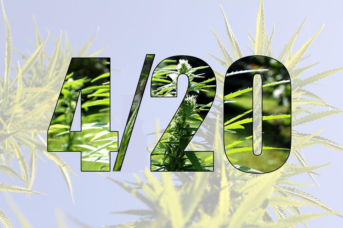 California cannabis regulators launch PR push backing legal
